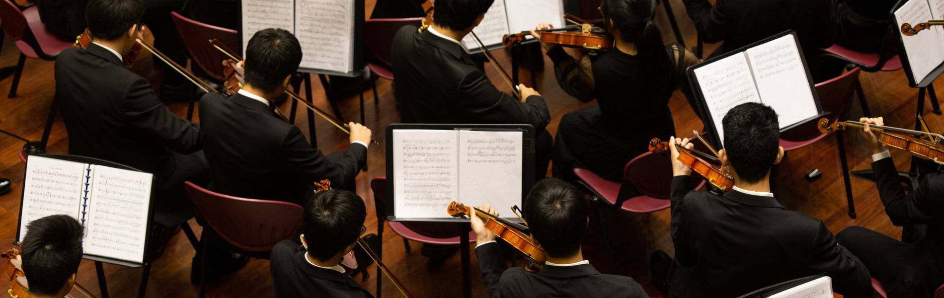 Violinists of a classical orchestra